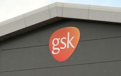 Activist investor Bluebell takes stake in GSK