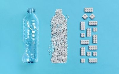 Bottles to bricks: Lego finds the right fit with recycled plastic